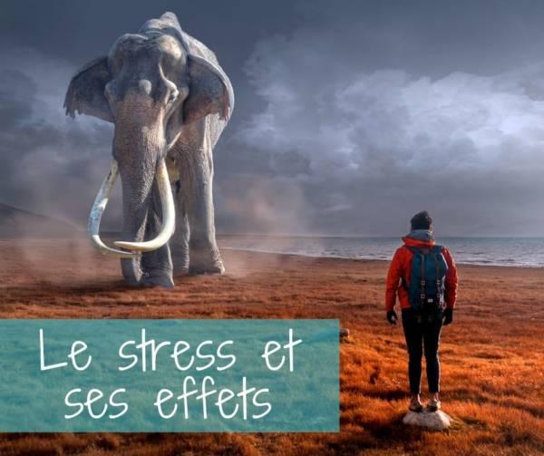 Le stress et ses effets